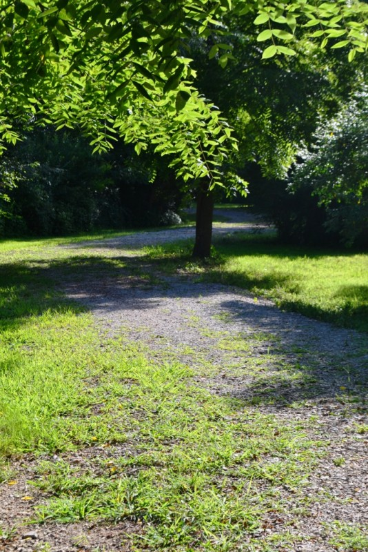 U S  Military Campgrounds and RV Parks - Whitaker Place